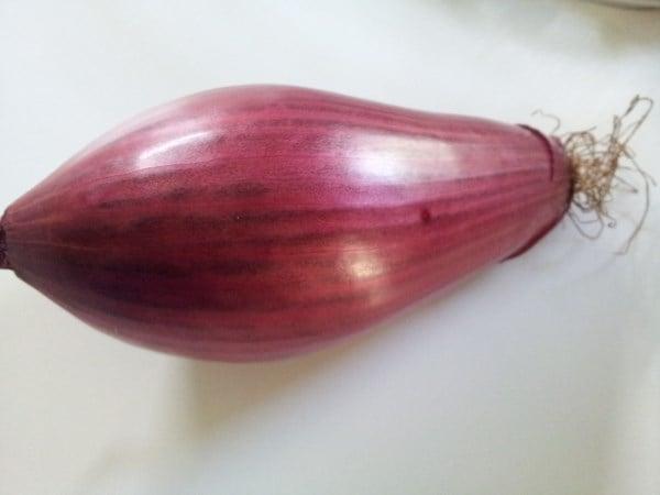Cipolla-Tropea