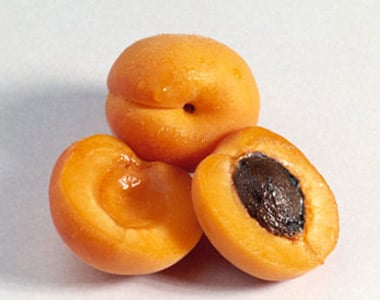 albicocche