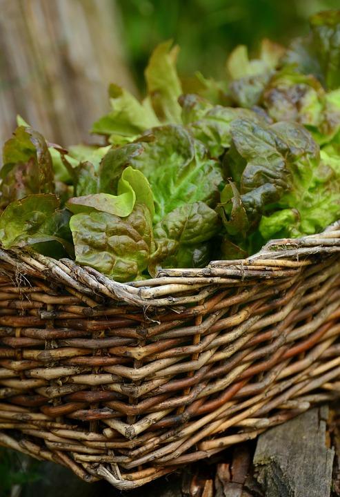 Cesto-per-verdure