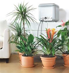 Irrigatore piante d'appartamento