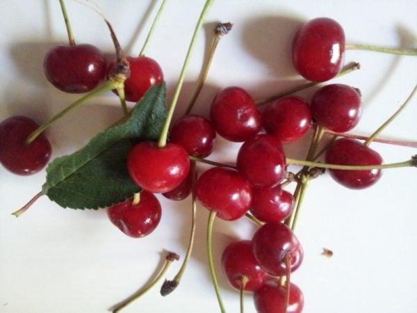 Amarene-ciliegie