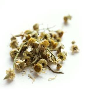 influenza-erbe medicinali