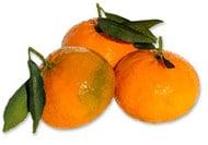 Mandarini sotto spirito