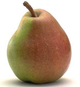 Grappa alla pera