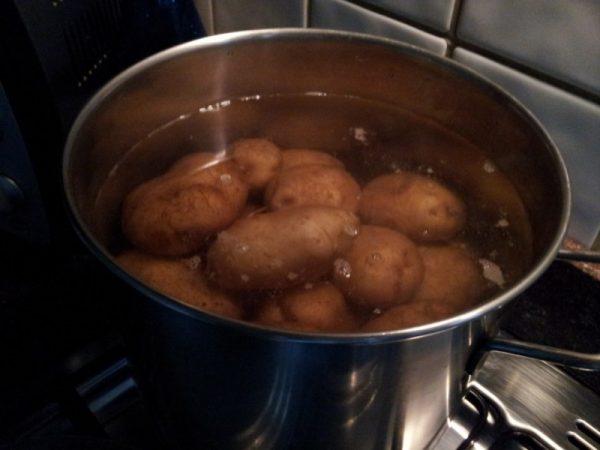 Patate-cottura