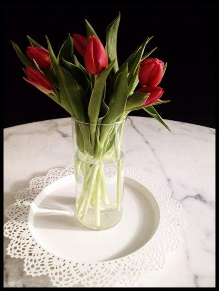 tulipani-foto