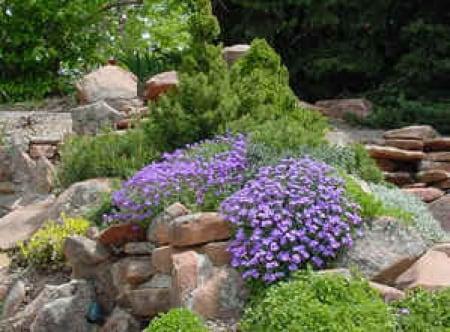 Il giardino roccioso - Rocce da giardino ...