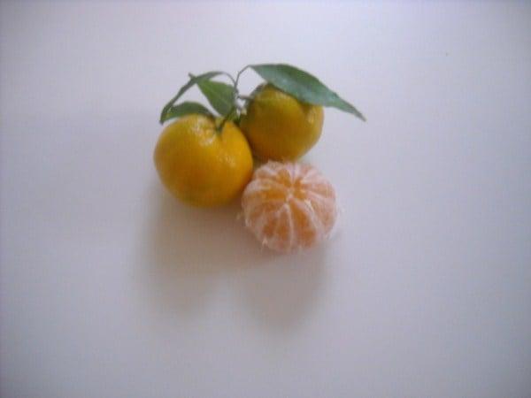 marmellata-mandarini-ricetta