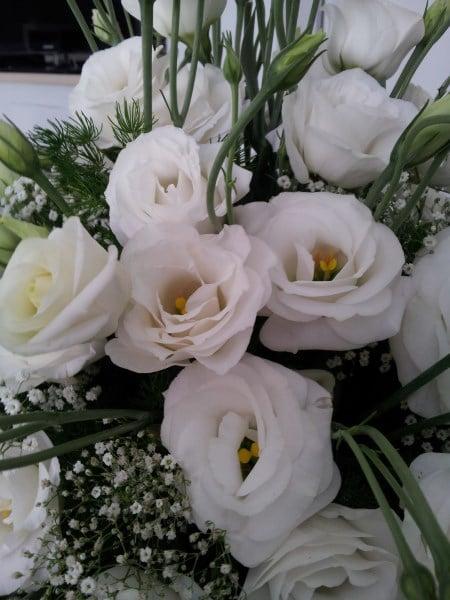lisianthus-fiori-sposa