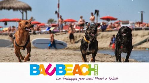 BauBeach, spiaggia per cani a Roma