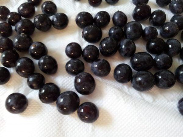 uva-acini