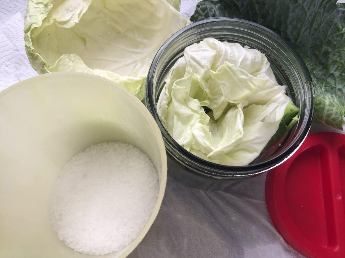 Verza-salamoia-ingredienti