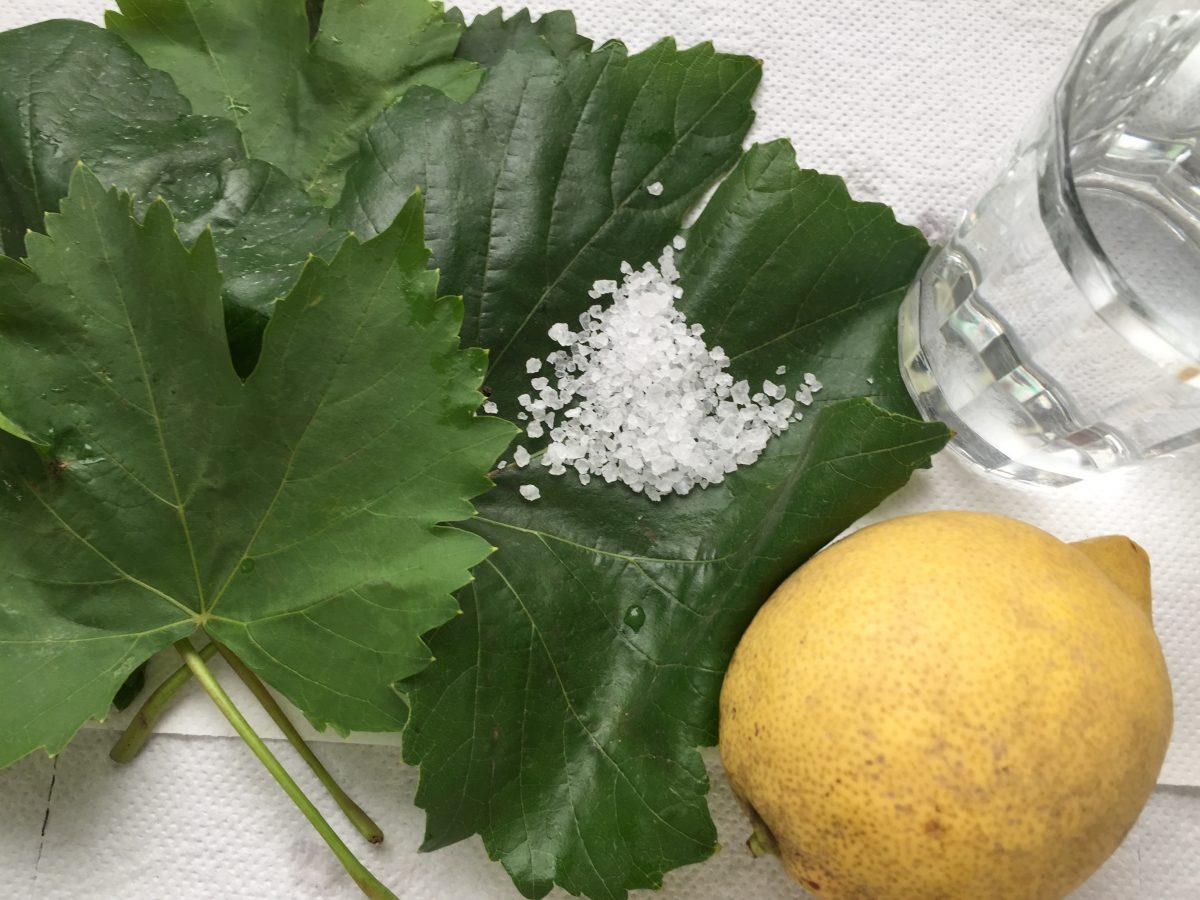 foglie-vite-salamoia-ingredienti