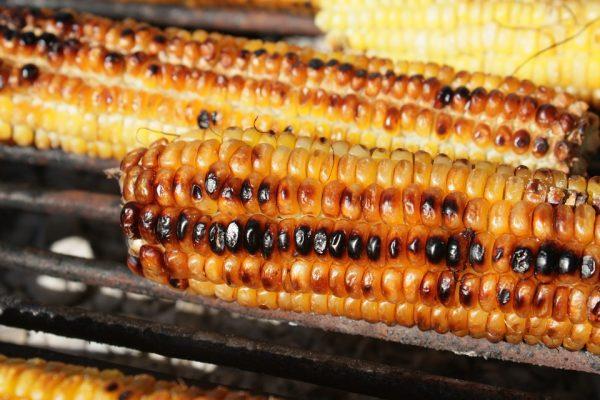 pannocchie-mais-grigliate