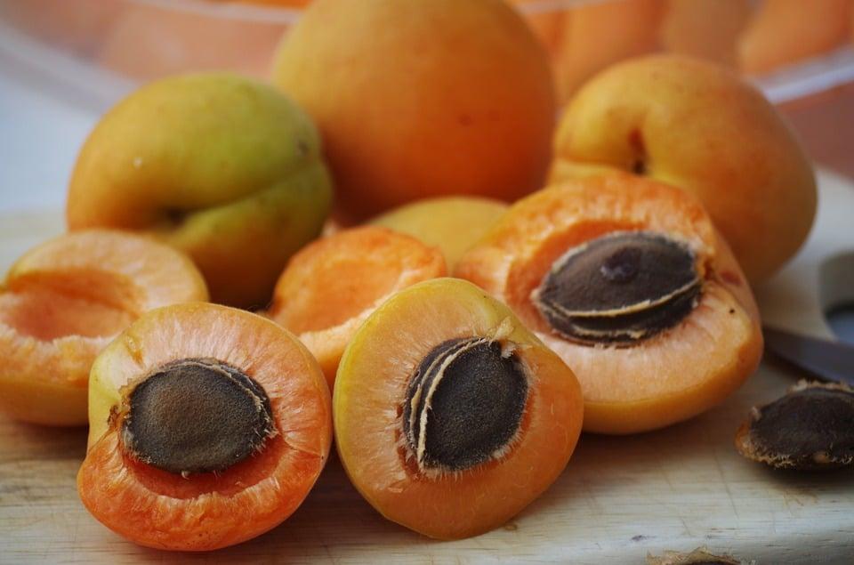 nocciolo-albicocche