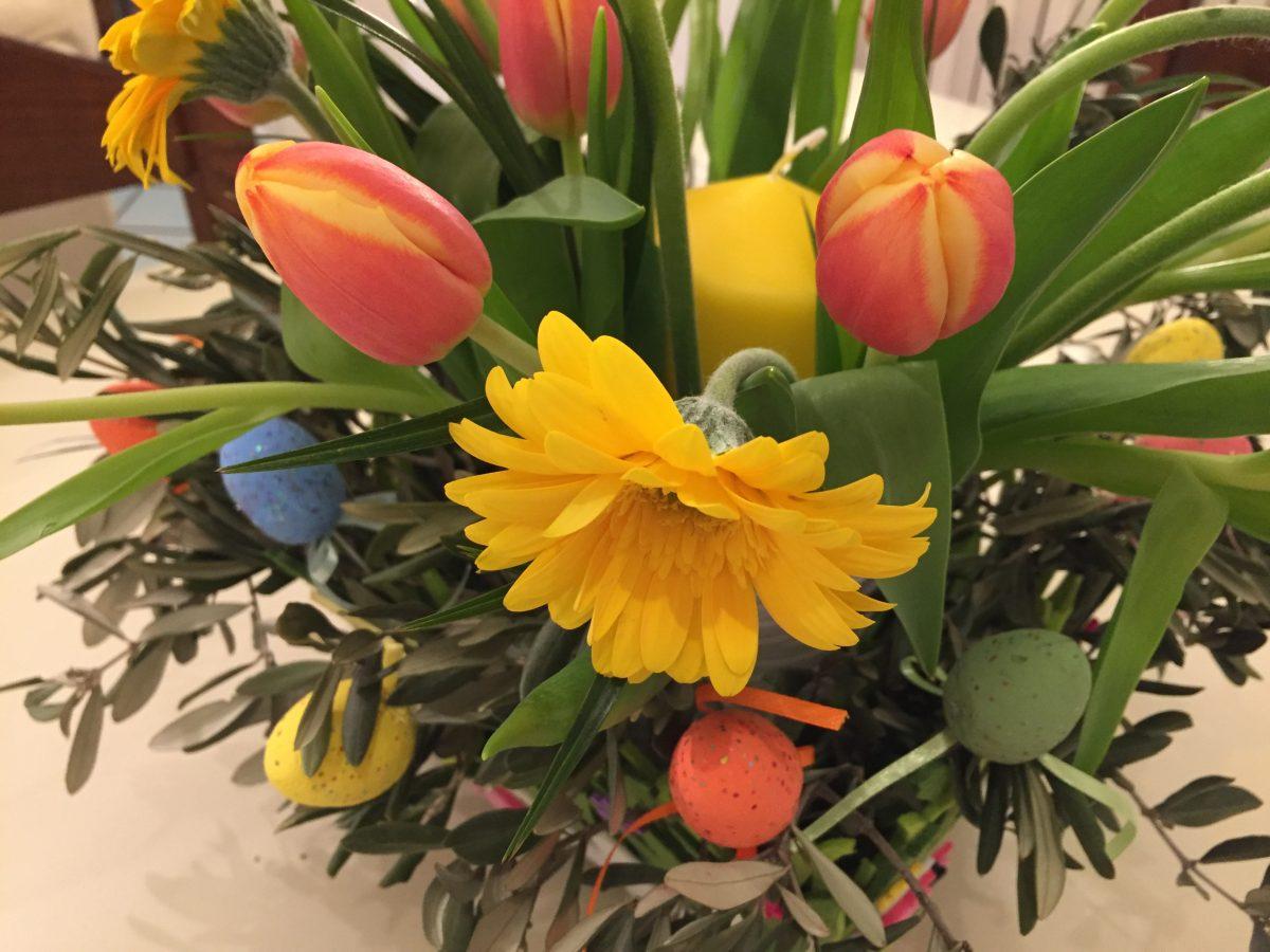 Fiori-Pasqua-confezione