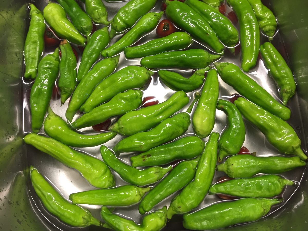peperoncini-verdi-lavaggio