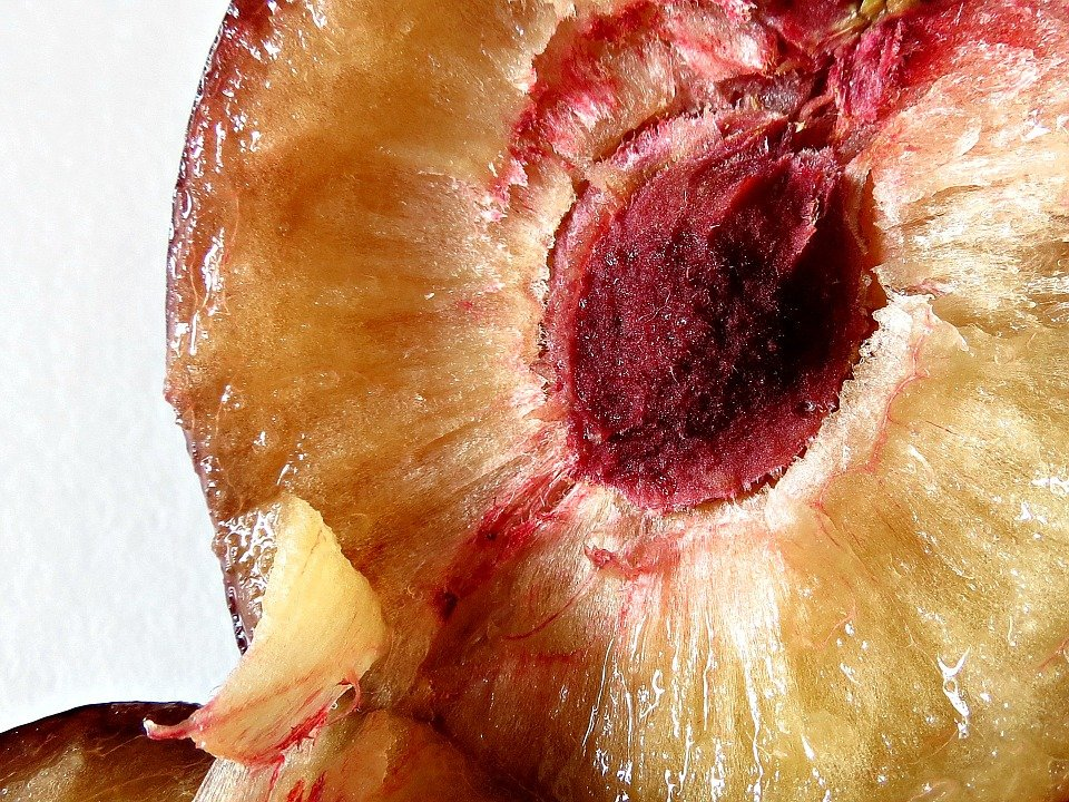 Biricoccola-prugna-polpa