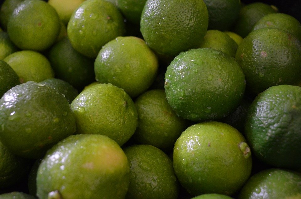 Lime-limette-raccolta
