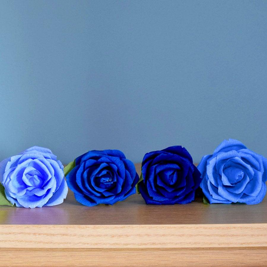 rosa-blu5