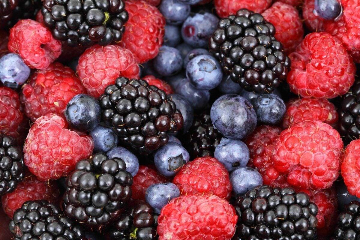 conservare-frutta-frigo-3