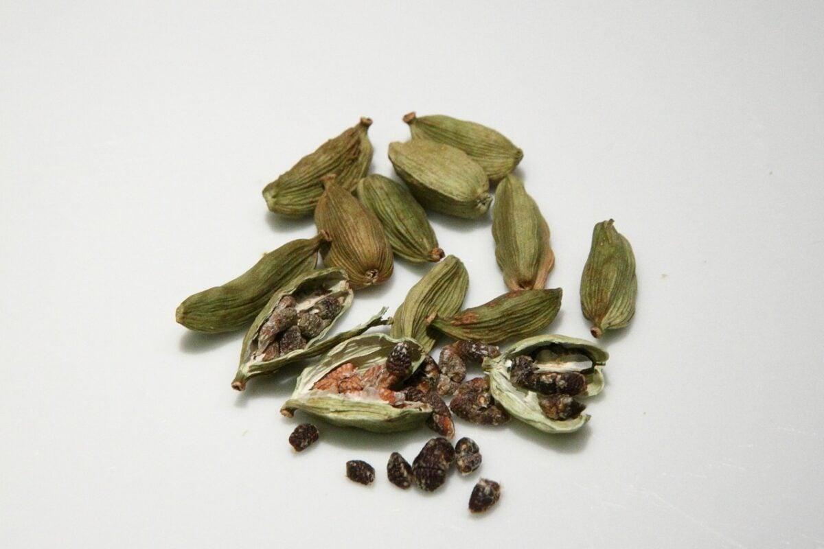 Cardamomo-semi