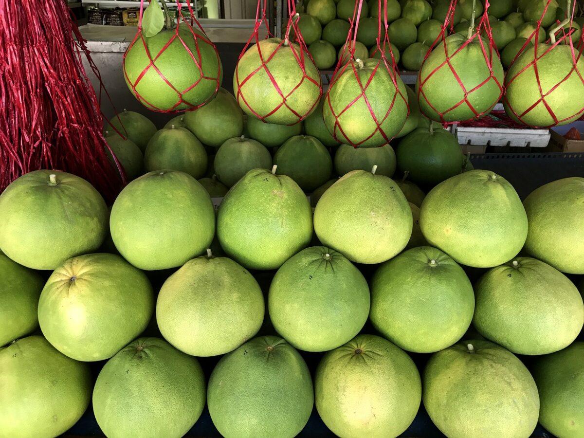 Pomelo-raccolta