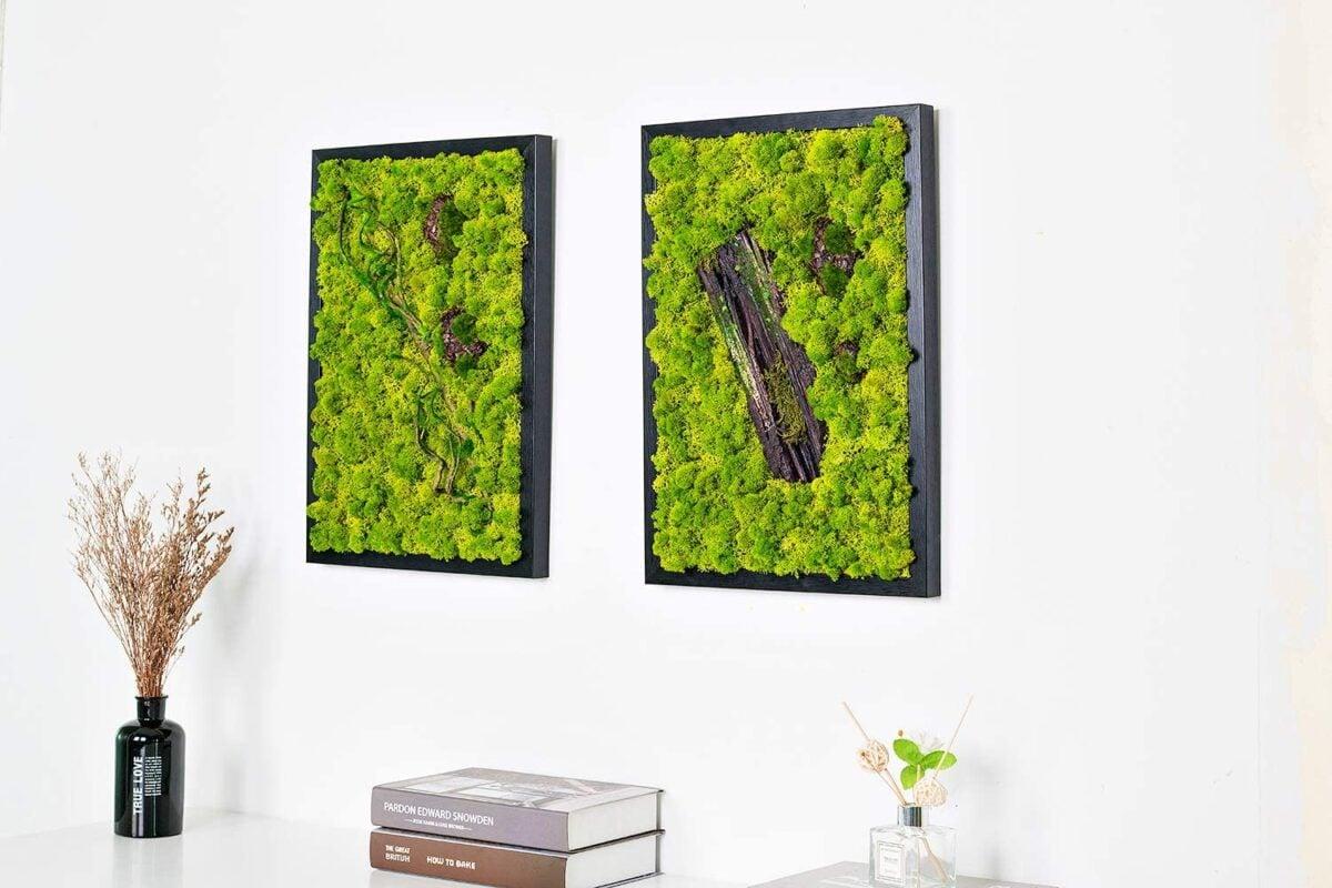 Quadri vegetali: come portare la natura indoor