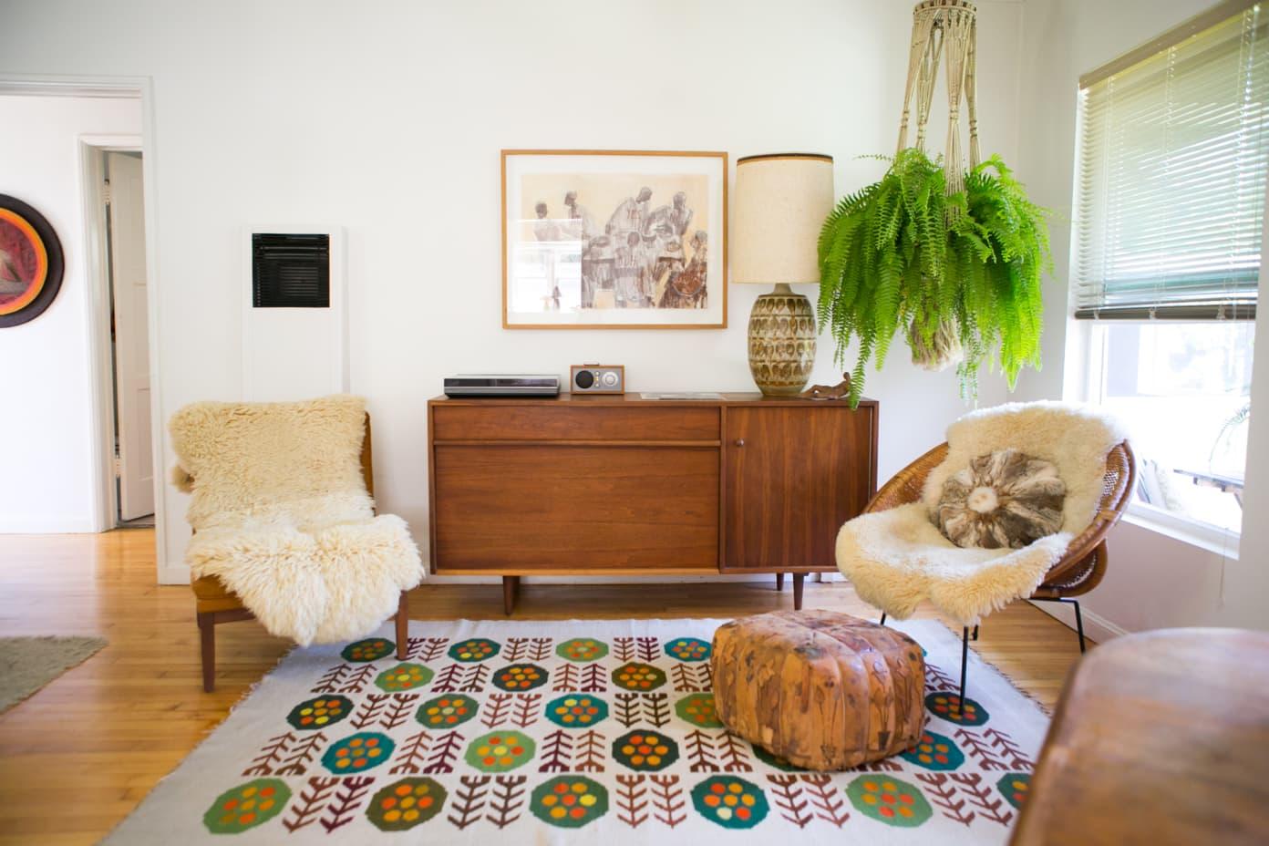 piante-ricadenti-casa-felce