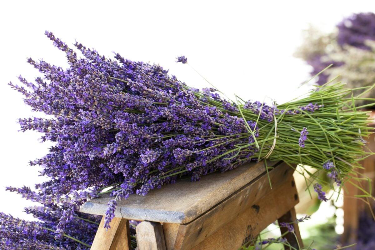 abbellire-giardino-stile-provenzale-2