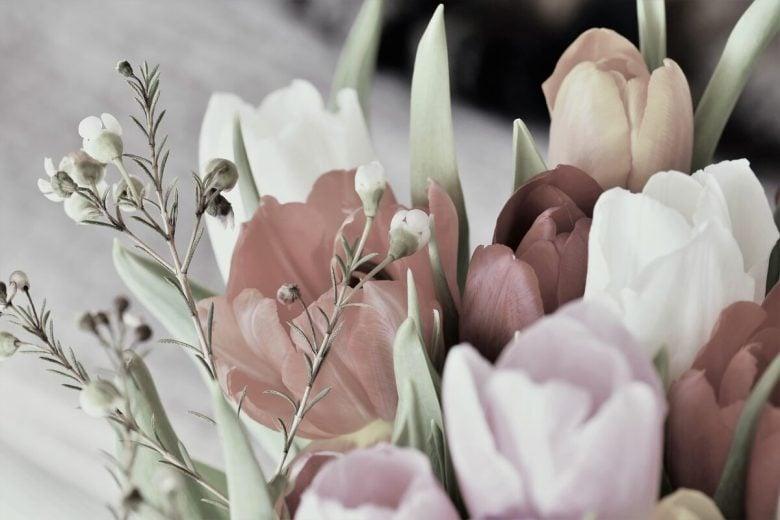 Bouquet, Tulipani